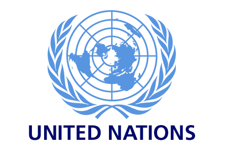 international organisations In general international organizations are based on multilateral treaties between  at least two sovereign nation-states the formation of an initially fairly loose.